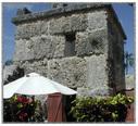 Castle_coral_1